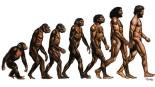 evolitio